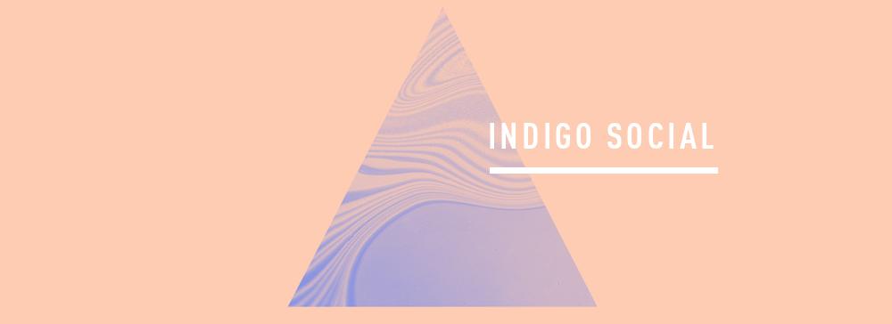 WEB BANNER - INDIGO SOCIAL