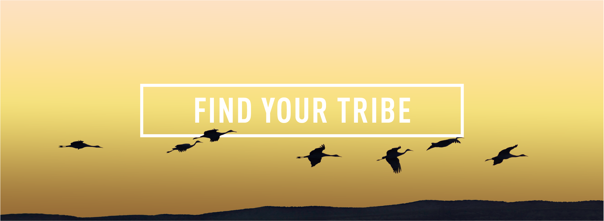 FIND YOUR TRIBE_Webpage Header