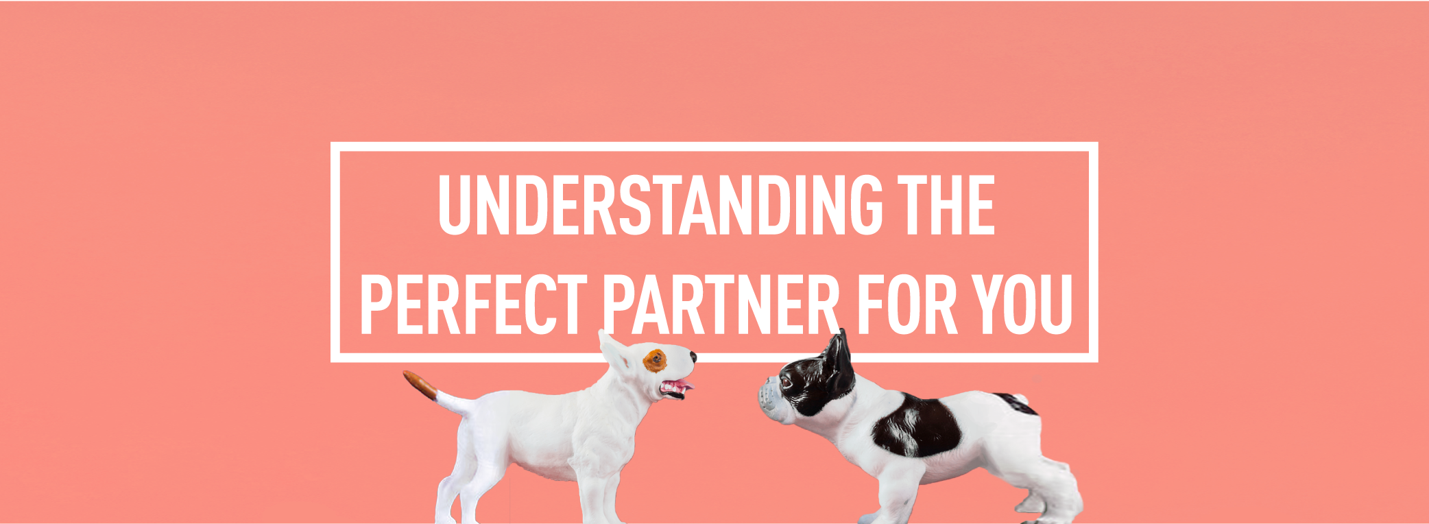UNDERSTANDING THE PERFECT PARTNER FOR YOU_Webpage Header
