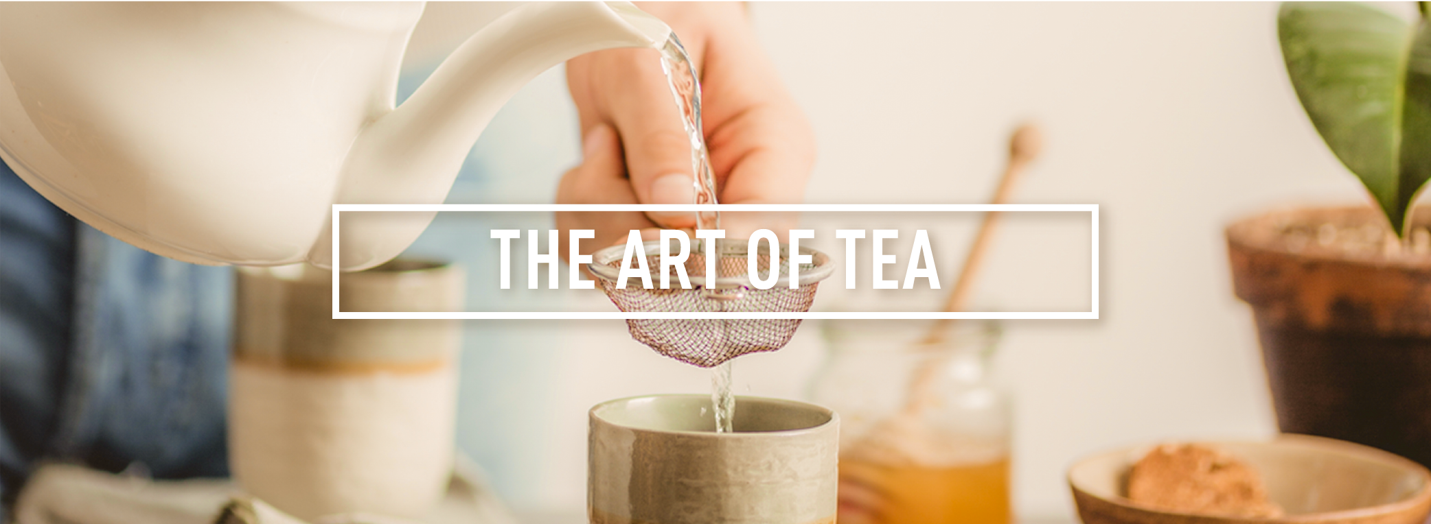 THE ART OF TEA_Webpage Header