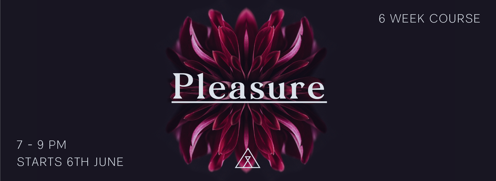 PLEASURE_Web Header3